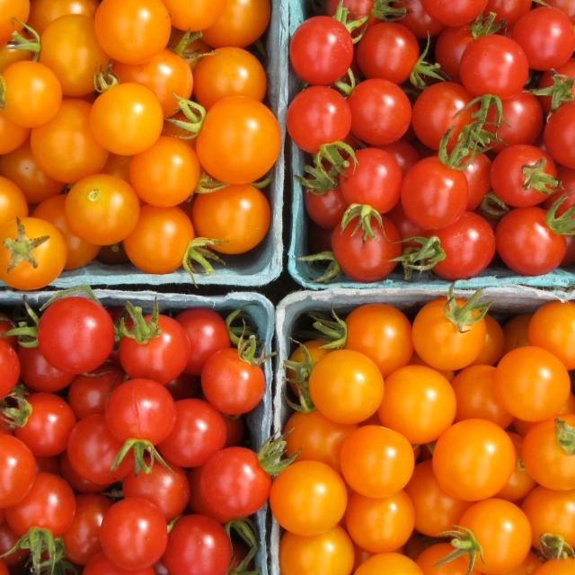 stonyhillfarm_cherrytomatoes