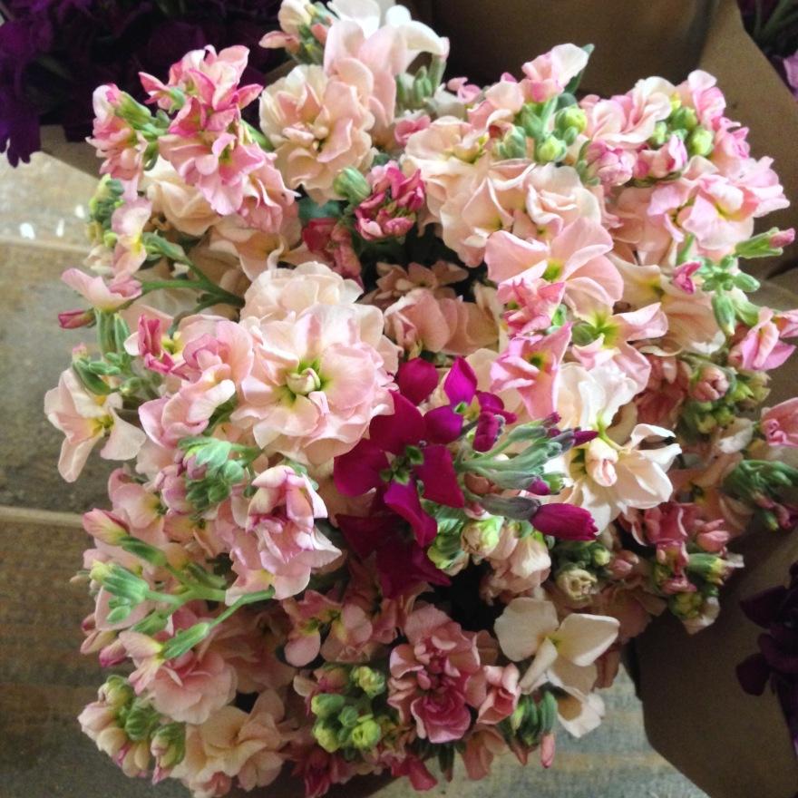 flowers - 1 (1)